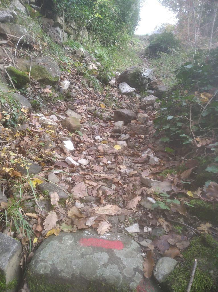 Frana muretto a secco lungo Via Francigena, in località Groppodalosio