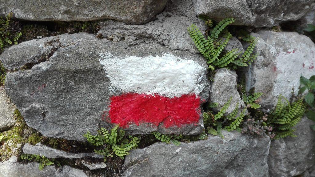 Via Francigena: segnali bianchi e rossi (bianco sopra e rosso sotto)